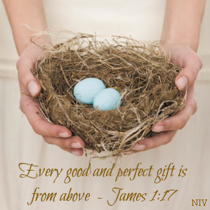 Every Good Perfect Gift