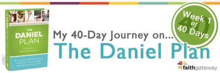 my journey daniel plan